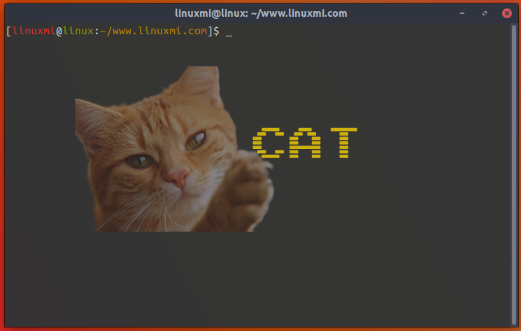 如何使用Linux cat命令