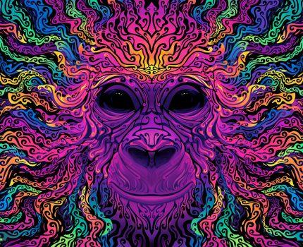 "Ubuntu 20.10 ""Groovy Gorilla""艺术品令人惊叹,使用Krita设计"