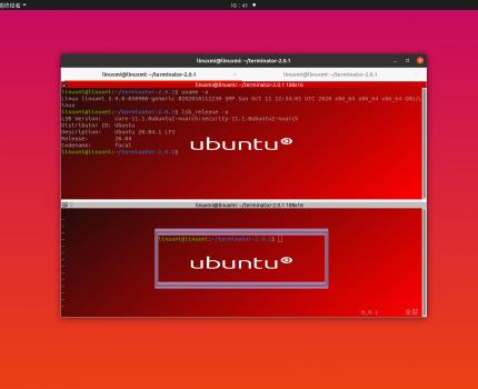 Terminator 2.0.1发布,Linux高级终端的未来