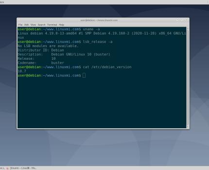 "Debian GNU/Linux 10.7 ""Buster"" 发布,38个安全更新"